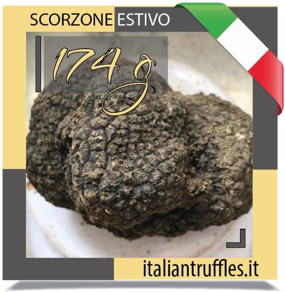 Scorzone Trueffel